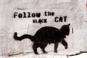 followtheblackcat