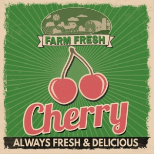 Cherry vintage grunge retro advertising poster, vector illustration.  Retro vegetables for farm fresh